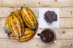 Шоколадные батончики и какао Стоковое Фото