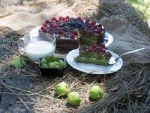 Шоколадный торт с свежими ягодами Стоковое фото RF