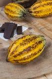 шоколад сырцовый Стоковое фото RF
