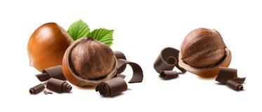 Шоколад фундука завивает 2 изолированный на белой предпосылке Стоковые Изображения RF