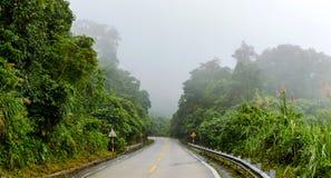 Шоссе в джунглях Стоковая Фотография