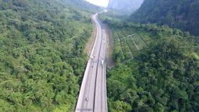 Шоссе в середине джунглей Стоковое Фото