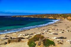 Шоссе 1 Калифорнии Стоковые Фото