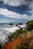 Шоссе Новой Зеландии прибрежное: Ветры сценарные дороги вдоль weste Стоковые Изображения RF