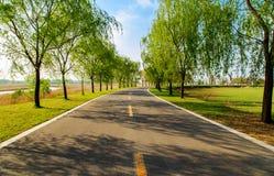 Шоссе парка заболоченного места завораживающее Стоковые Изображения