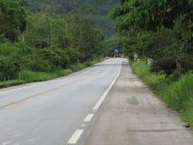 Шоссе Рио Сантоса - в середине леса Стоковые Изображения
