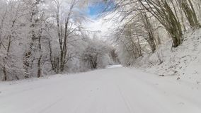 Шоссе через лес в зиме, GoPro сток-видео