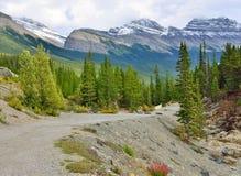 Шоссе через канадские скалистые горы вдоль бульвара Icefields между Banff и яшмой Стоковая Фотография