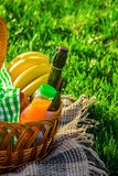 Шотландка для пикника на траве Стоковое Фото