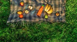 Шотландка для пикника на траве Стоковые Фото