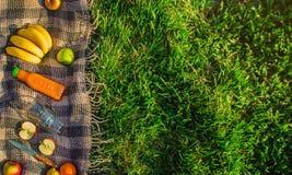 Шотландка для пикника на траве Стоковые Фотографии RF