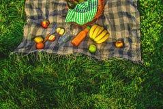 Шотландка для пикника на траве Стоковые Изображения