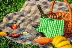 Шотландка для пикника на траве Стоковая Фотография