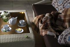 Шотландка на софе и горячий чай в таблице Стоковые Фотографии RF