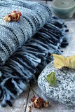 шотландка одеяла Стоковые Фото