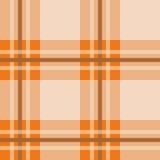 шотландка померанца предпосылки Стоковые Фото