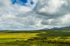 Шотландская низменность, сфотографированная от популярной дорожки известной как буки стоковое фото