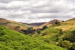 Шотландский горный склон, живописный взгляд над Гленом Девоном Стоковое Изображение RF