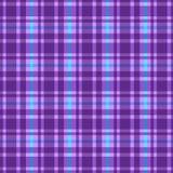 шотландка картины Стоковые Фото