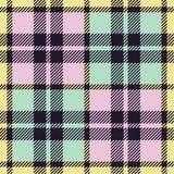 шотландка картины Стоковая Фотография RF