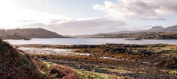 Шотландская вересковая пустошь в Dunvegan Стоковые Изображения RF