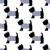 Шотландский терьер в картине футболки матроса безшовной Милые собаки на белой иллюстрации предпосылки Стоковое Изображение