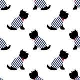 Шотландский терьер в картине футболки матроса безшовной Сидя собаки на белой иллюстрации предпосылки Стоковая Фотография