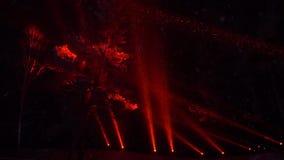 Шоу лазерного луча в лесе зимы во время снежностей вечером сток-видео
