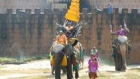 Шоу темы слона акции видеоматериалы