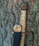 Шпага 2 около дерева в лесе стоковое изображение rf