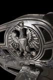 шпага части офицера Венгрии кавалерии Австралии стоковое фото rf