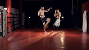 Шпат 2 бойцов в спортзале освещенном темнотой видеоматериал