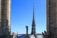 Шпиль Нотр-Дам de Парижа стоковые изображения