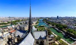 Шпиль Нотр-Дам de Парижа стоковые фото