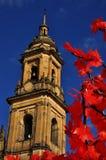Шпиль собора Богота стоковые изображения
