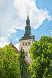 шпиль tallinn niguliste церков стоковое фото rf