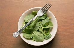 Шпинат и листовая капуста младенца Стоковые Изображения RF