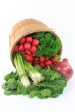 шпинат салата продуктов младенца смешанный Стоковые Фото