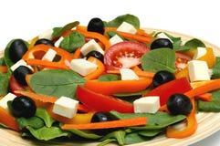 шпинат салата стоковая фотография