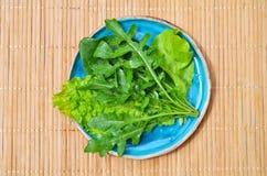 Шпинат салата arugula овощей зеленого цвета лета в голубой плите на деревянном поверхностном взгляде сверху стоковые фото