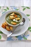 шпинат супа стоковое изображение rf