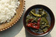 Шпинат Haak Кашмира с рисом от Индии Стоковое Изображение RF