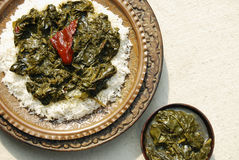 Шпинат Haak Кашмира с рисом от Индии Стоковое Изображение