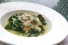 шпинат lasagne козочки сыра Стоковые Фото