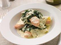 шпинат lasagne открытый salmon Стоковые Изображения