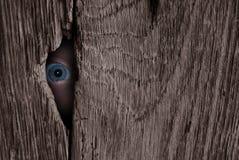 шпионка глаза Стоковая Фотография