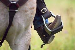 шпора лошади s ковбоя ботинка западная Стоковая Фотография