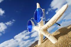 шпунтовые starfish Стоковые Фотографии RF