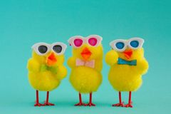 3 шпунтовых цыпленока нося солнечные очки на предпосылке Aqua Стоковое Изображение RF