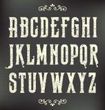 Шрифт года сбора винограда Grunge Стоковое Изображение